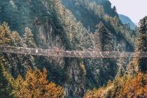 Hanging bridges everywhere